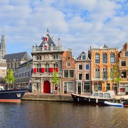 Arte, tulipani e tessuti Haarlem, regina d'Olanda