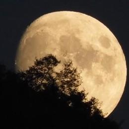 «Guarda che luna...»