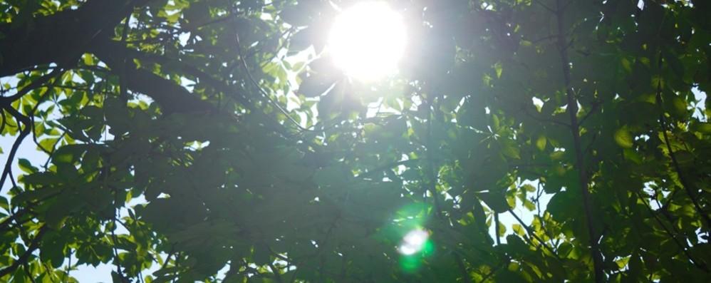 Ozono, torna l'allarme inquinamento E nelle nostre valli c'è quello milanese
