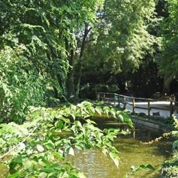 Com'è l'estate nei parchi bergamaschi? Bambini e relax, ma anche vandalismi
