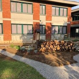 A Scanzo si farà lezione anche in giardino Pronta l'aula natura del Wwf - Foto