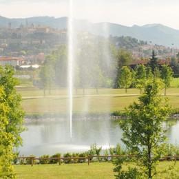 Al Parco delle Trucca il Bosco della memoria  Sarà un omaggio alle vittime del Covid-19