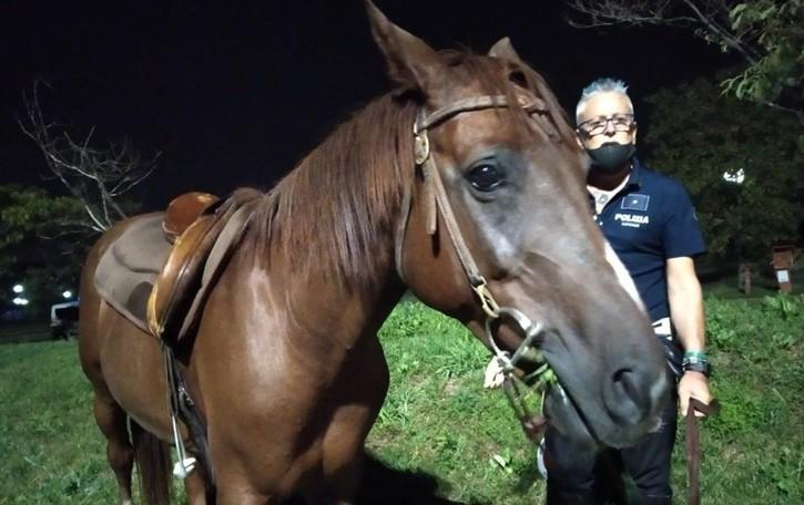 Il rapinatore della Bmw a Verdello era arrivato al centro commerciale a cavallo