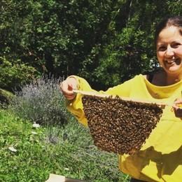 Passione pura in Val Cavallina Così l'architetta ora è apicoltrice