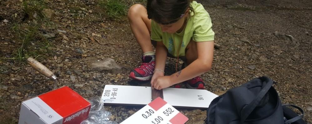 Rubati i cartelli sul sentiero del rifugio Magnolini «Svitati e portati via: gesto vile»