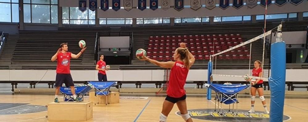 Volley Bergamo verso la Supercoppa Valentin in viaggio, Fersino pronta al via