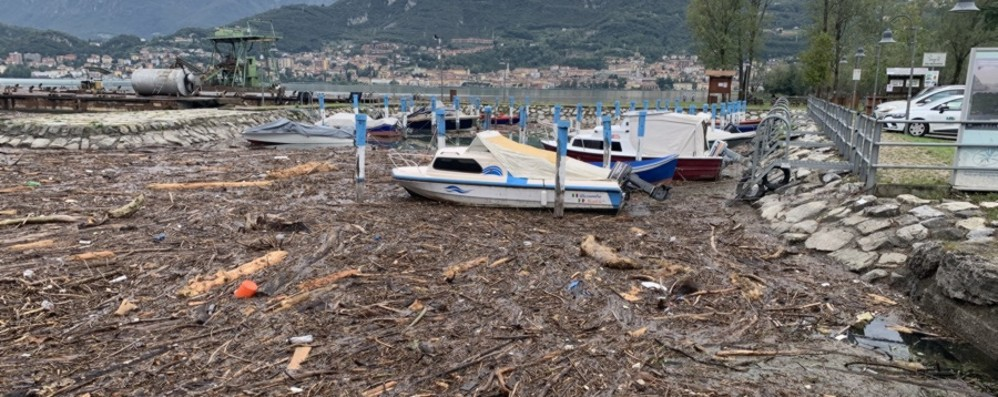 Battelli spazzini nel lago d'Iseo Via 800 mila chili di alghe e tronchi