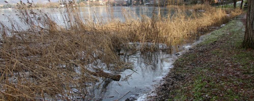 Il lago che ghiaccia fa il giro dei social Endine, l'appello: non saliteci - Foto