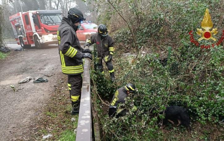 Caduto nel greto in un canale a Filago I Vigili del Fuoco salvano un cane- Video