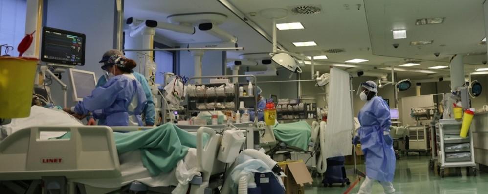 Il dossier su Bergamo  «Il virus sotto controllo»