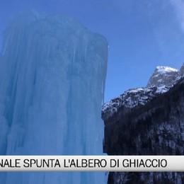 Valcanale e l'albero di ghiaccio