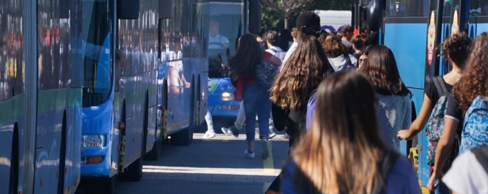 Le superiori verso la riapertura «Siamo già pronti con gli autobus»