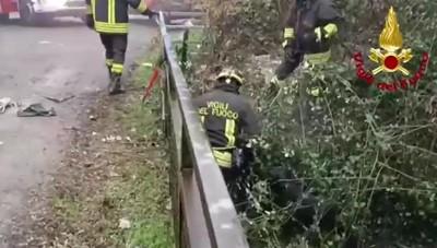 Recuperato un cane nel greto di un canale a Filago