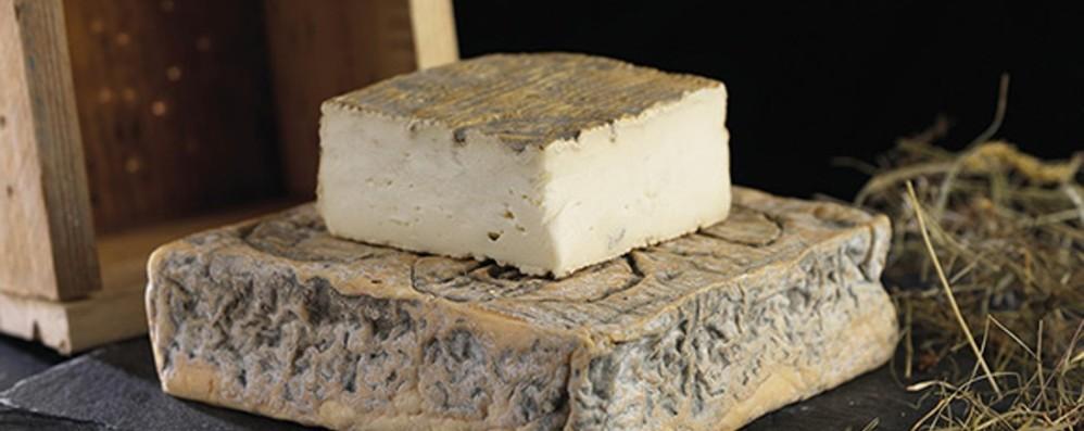 Bergamo e il suo cibo amato a Oriente Taleggio tra i prodotti Dop tutelati in Cina