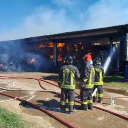 Incendio in una cascina di Martinengo Fiamme alte, morti alcuni animali - Foto