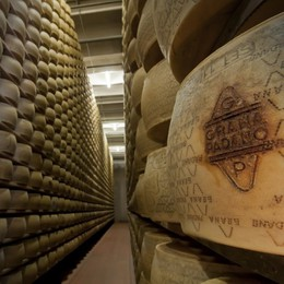 La pausa ai dazi    americani ridà il sapore  dei formaggi  al Made in Italy