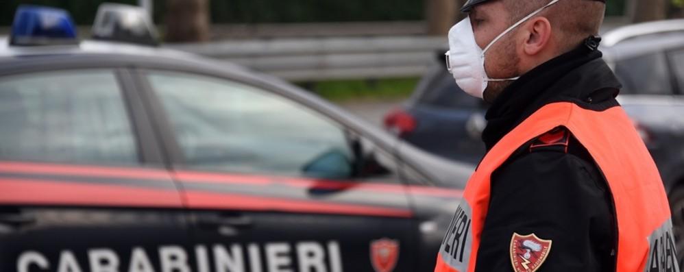 Fuga dall'alt e schianto per 3 ventenni: denunciati e multe per 1.400 euro