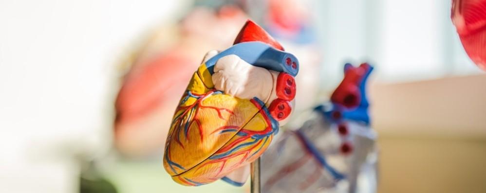 Ricoveri quasi dimezzati  Il coronavirus fa male al cuore