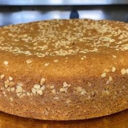Dal Piemonte con gusto Ecco la torta alle nocciole