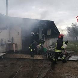 Incendio in un allevamento a Romano: maiali feriti,  fiamme domate dai pompieri