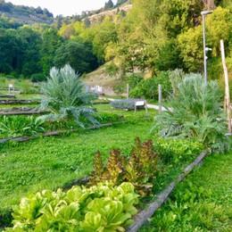A cosa serve l'Orto Botanico di Bergamo dopo lo spillover