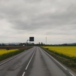 In mezzo al giallo