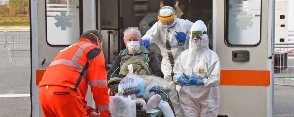 """La Vecchia: «Dati positivi, ma persiste il problema del """"carico"""" sugli ospedali»"""