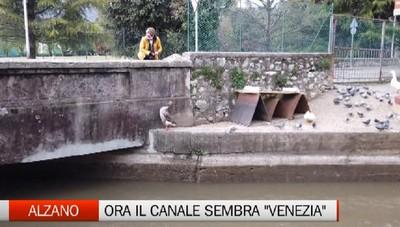 Canale e pista ciclabile rinati ad Alzano, grazie al gruppo facebook