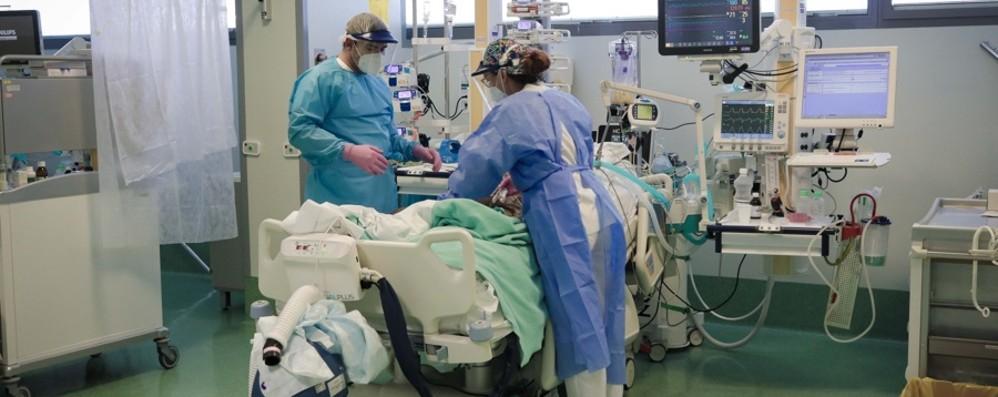 Il 12 maggio è la Giornata degli infermieri:  «Non siamo eroi, più vicini alla gente»