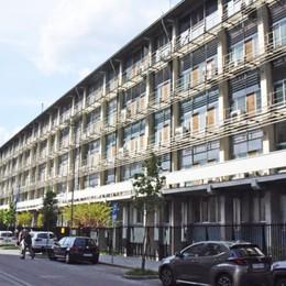 Palafrizzoni in campo: «Università di Bergamo in  via Statuto»