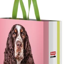 Cane o gatto? Con la Coop le borse solidali di «Alimenta l'Amore»