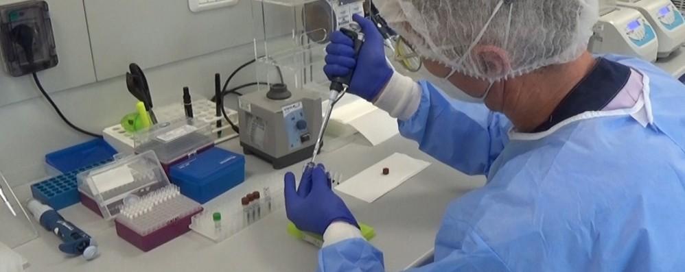 Coronavirus in Italia, 5.948 nuovi casi con oltre 121 mila test. Le vittime sono 256