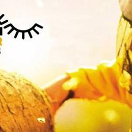 Stili di vita sostenibili e alternativi:  5 film inediti al Cineteatro del Borgo a Bergamo
