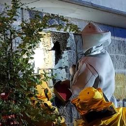 A Martinengo «sgomberato» un alveare di 15 mila api nella cabina Enel