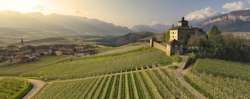 I castelli della Val di Non fra visite e grande arte