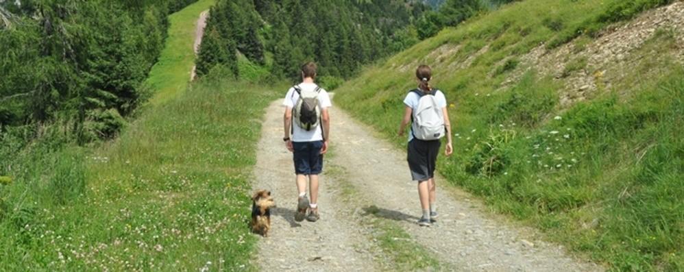 Valnegra diventa «Borgo Dog» Vacanze con gli amici a 4 zampe