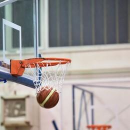 Bergamo Basket, verso l'iscrizione alla B Nuovo coach e squadra da comporre