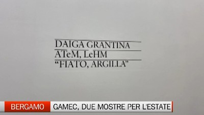 Bergamo - Due mostre per l'estate della GAMeC