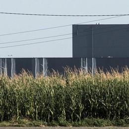 Il consumo di suolo nella Bergamasca all'11,8%, 7,1% in Italia