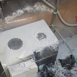 Incendio in un centro medico a Romano: spazi evacuati, nessun ferito - Foto