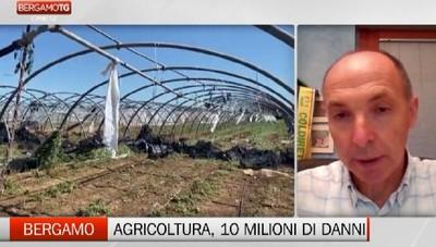Maltempo - Dieci milioni di danni per l'agricoltura bergamasca