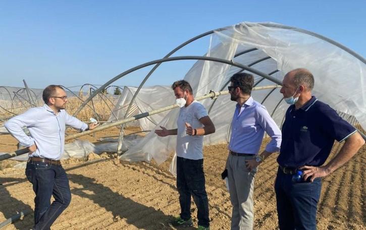 Nubifragio, danni agricoli per 10 milioni: «Da potenziare le assicurazioni»