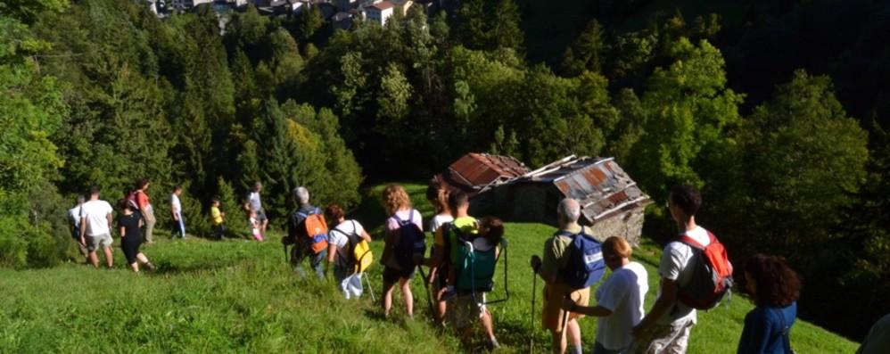 Torna le «Erbe del Casaro»: al via incontri gastronomici e passeggiate in Val Brembana
