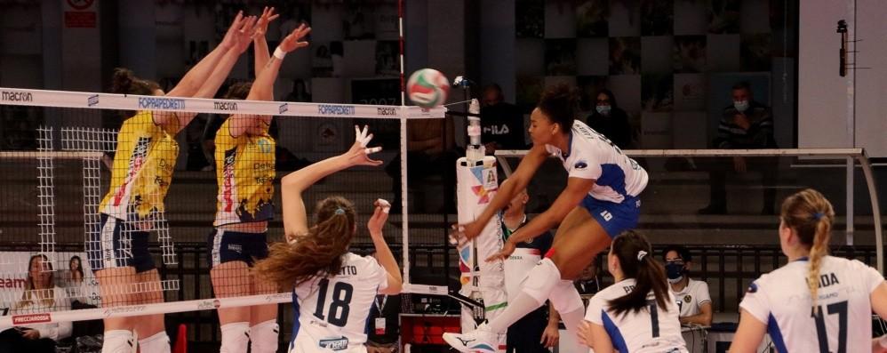 Volley femminile, è ufficiale: «Nuova società, Bergamo non smette di brillare»