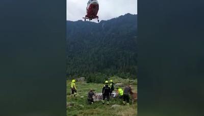 Il recupero degli asini con l'elicottero