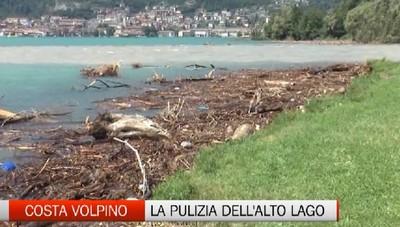 Pizzo di Costa Volpino, la pulizia del lago da legname e plastica