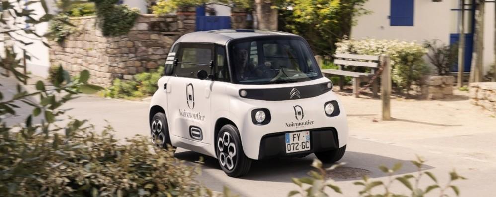 Citroën My Ami Cargo  ordini e acquisti on line