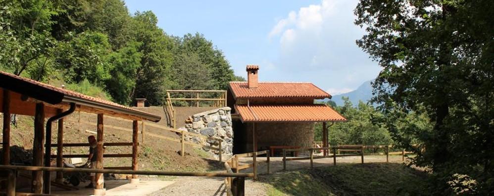 Al Bioparco della Valle Cavallina si festeggia Sant'Antonio