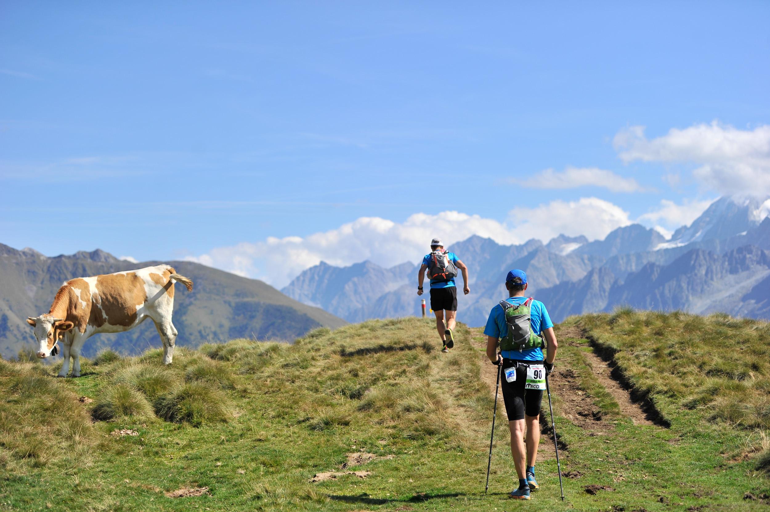 Adamello Ultra Trail, un weekend da leggenda