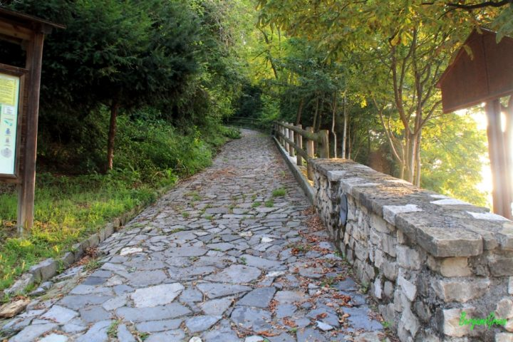 Passi antichi lungo la via Mercatorum